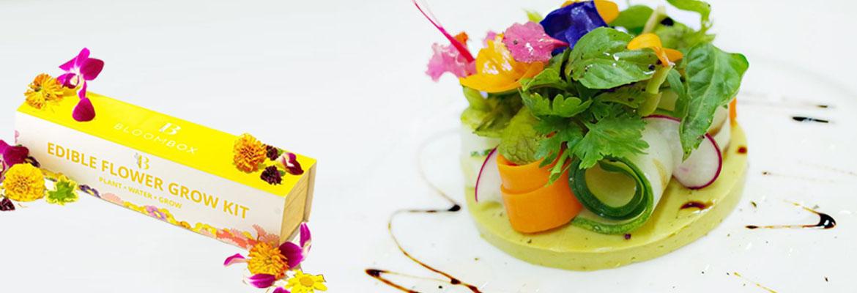 Edible Flowers Grow Kit