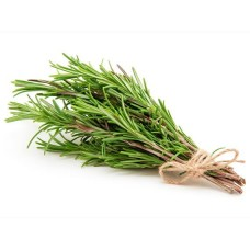 Fresh Rosemary Leaf